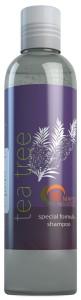 Maple Holistics Tea Tree Oil Shampoo for Moderate Dandruff